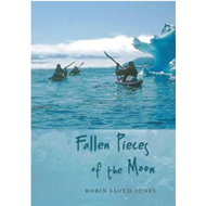 Fallen Pieces of the Moon (BOK)
