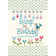Produktbilde for Bump to Birthday, Pregnancy & First Year Journal (BOK)