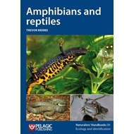 Amphibians and Reptiles (BOK)