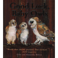 Good Luck Baby Owls (BOK)