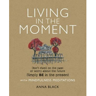 Living in the Moment (BOK)