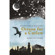 Orison for a Curlew (BOK)