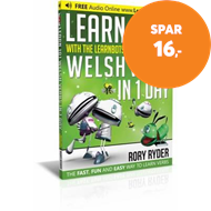 Produktbilde for Learn 101 Welsh Verbs in 1 Day - With LearnBots (BOK)