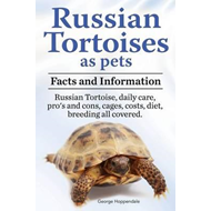 Russian Tortoises as Pets. Russian Tortoise (BOK)