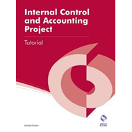Internal Control and Accounting Project (BOK)