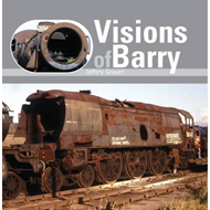 Visions of Barry (BOK)