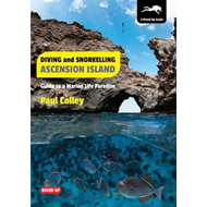 Diving and Snorkelling Ascension Island (BOK)