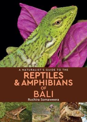 Naturalist's Guide to the Reptiles & Amphibians of bali (BOK)