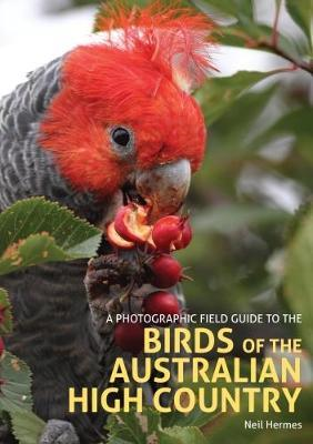 Photographic Field Guide to the Birds of the Australian High (BOK)