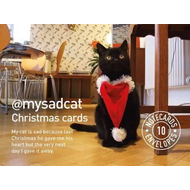 My Sad Cat Christmas Cards (BOK)