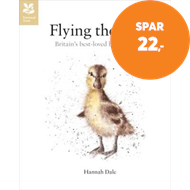 Produktbilde for Flying the Nest - The early days of Britain's best-loved animals (BOK)