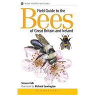 Field Guide to the Bees of Great Britain and Ireland (BOK)