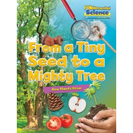 Fundamental Science Key Stage 1: From a Tiny Seed to a Might (BOK)