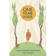 Produktbilde for One Year Wiser (BOK)