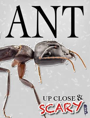 Up Close & Scary Ant (BOK)