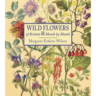 Wild Flowers of Britain (BOK)