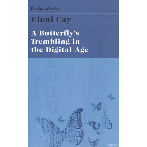 Butterfly's Tremblings in the Digital Age (BOK)