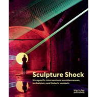 Sculpture Shock (BOK)