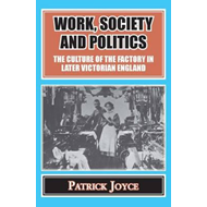 Work, Society and Politics (BOK)