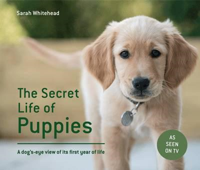 Secret Life of Puppies (BOK)