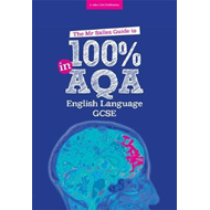 Mr Salles Guide to 100% in AQA English Language Exam (BOK)