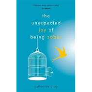 Unexpected Joy of Being Sober (BOK)
