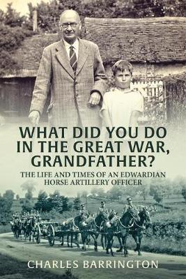 What Did You Do in the Great War, Grandfather? (BOK)