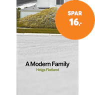 Produktbilde for Modern Family (BOK)