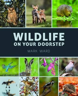 Wildlife on Your Doorstep (BOK)