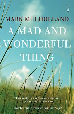 Mad and Wonderful Thing (BOK)