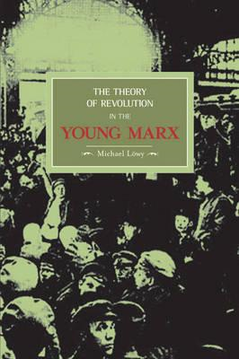 Theory of Revolution in the Young Marx (BOK)