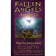 Fallen Angels Among Us (BOK)