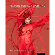 Picture Perfect Lighting (BOK)