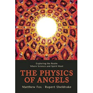 Physics of Angels (BOK)