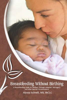Breastfeeding Without Birthing: A Breastfeeding Guide for Mo (BOK)