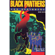 Black Panthers for Beginners (BOK)
