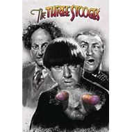 Three Stooges Volume 1 (BOK)
