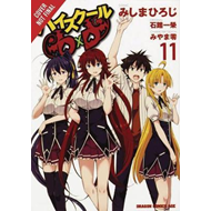 High School DxD, Vol. 11 (BOK)