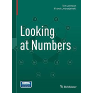Looking at Numbers (BOK)