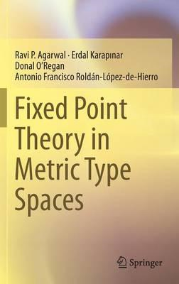 Fixed Point Theory in Metric Type Spaces (BOK)