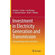 Investment in Electricity Generation and Transmission (BOK)