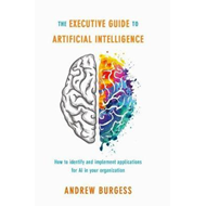 Executive Guide to Artificial Intelligence (BOK)