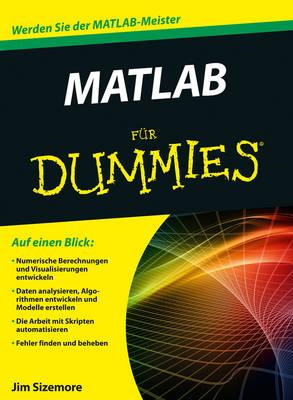 MATLAB Fur Dummies (BOK)