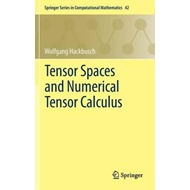 Tensor Spaces and Numerical Tensor Calculus (BOK)