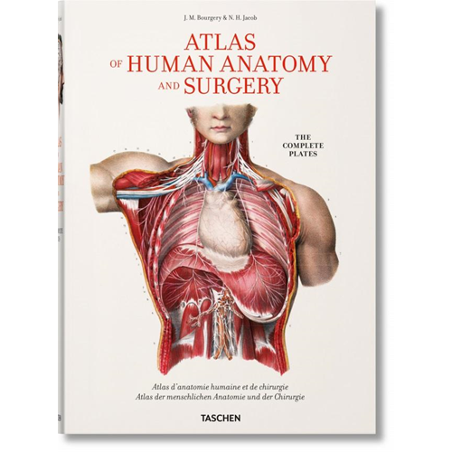 Bourgery: Atlas of Human Anatomy and Surgery (BOK)