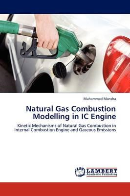 Natural Gas Combustion Modelling in IC Engine (BOK)