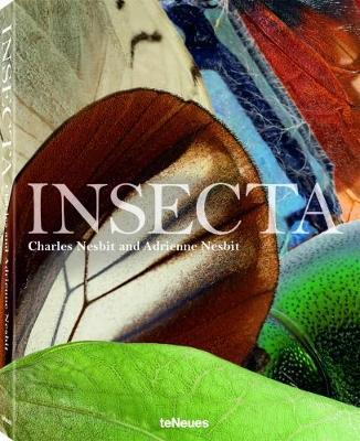 Insecta (BOK)