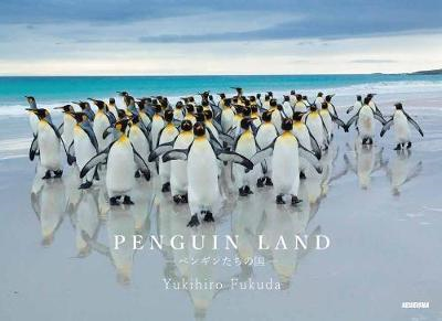 Penguin Land (BOK)
