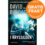 Produktbilde for I kryssilden (BOK)