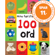 Produktbilde for 100 ord (BOK)